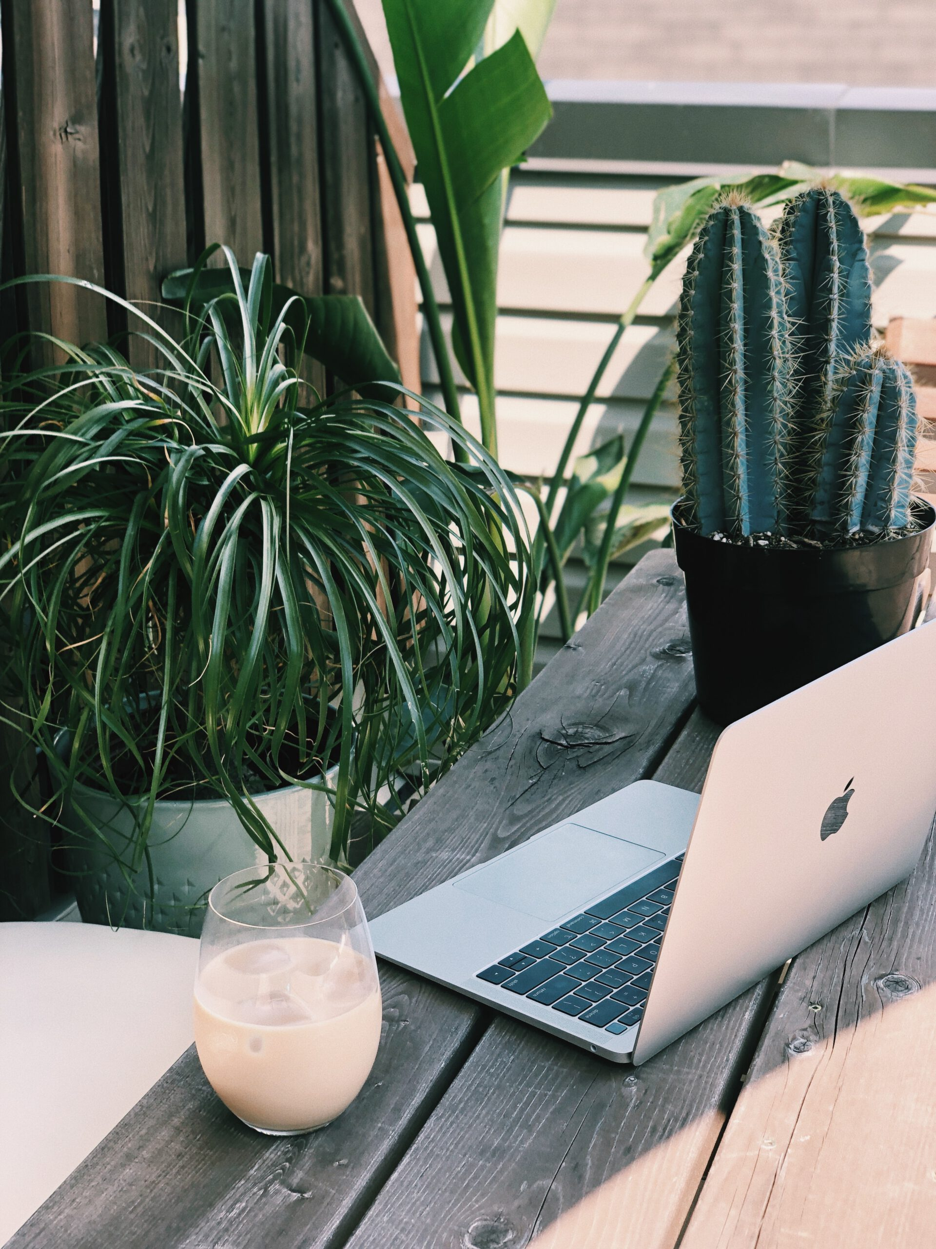 laptop at table outside with plants and coffee